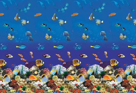 Aquarium Overlap